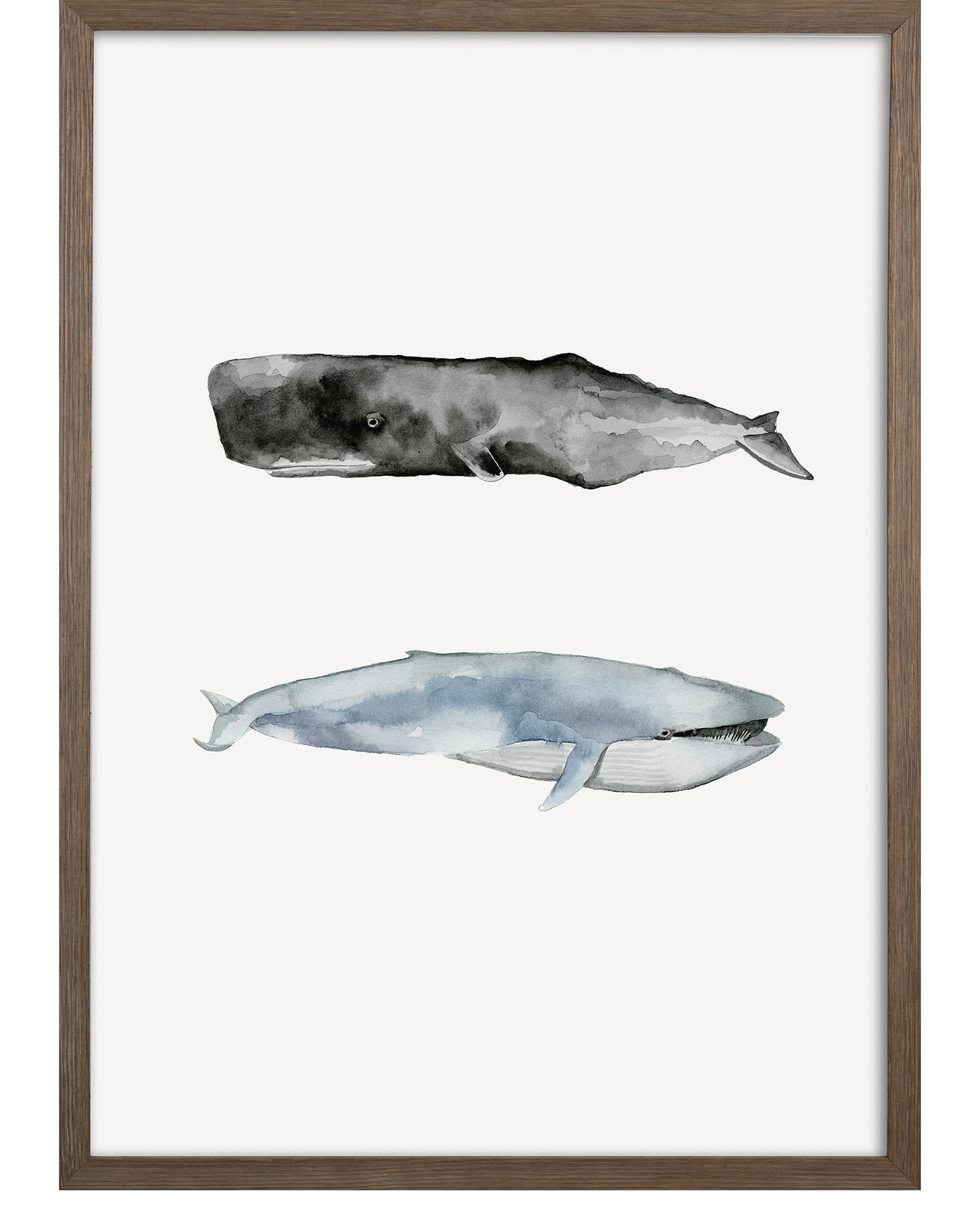 """Whale Grouping2"" by Natasha Marie"