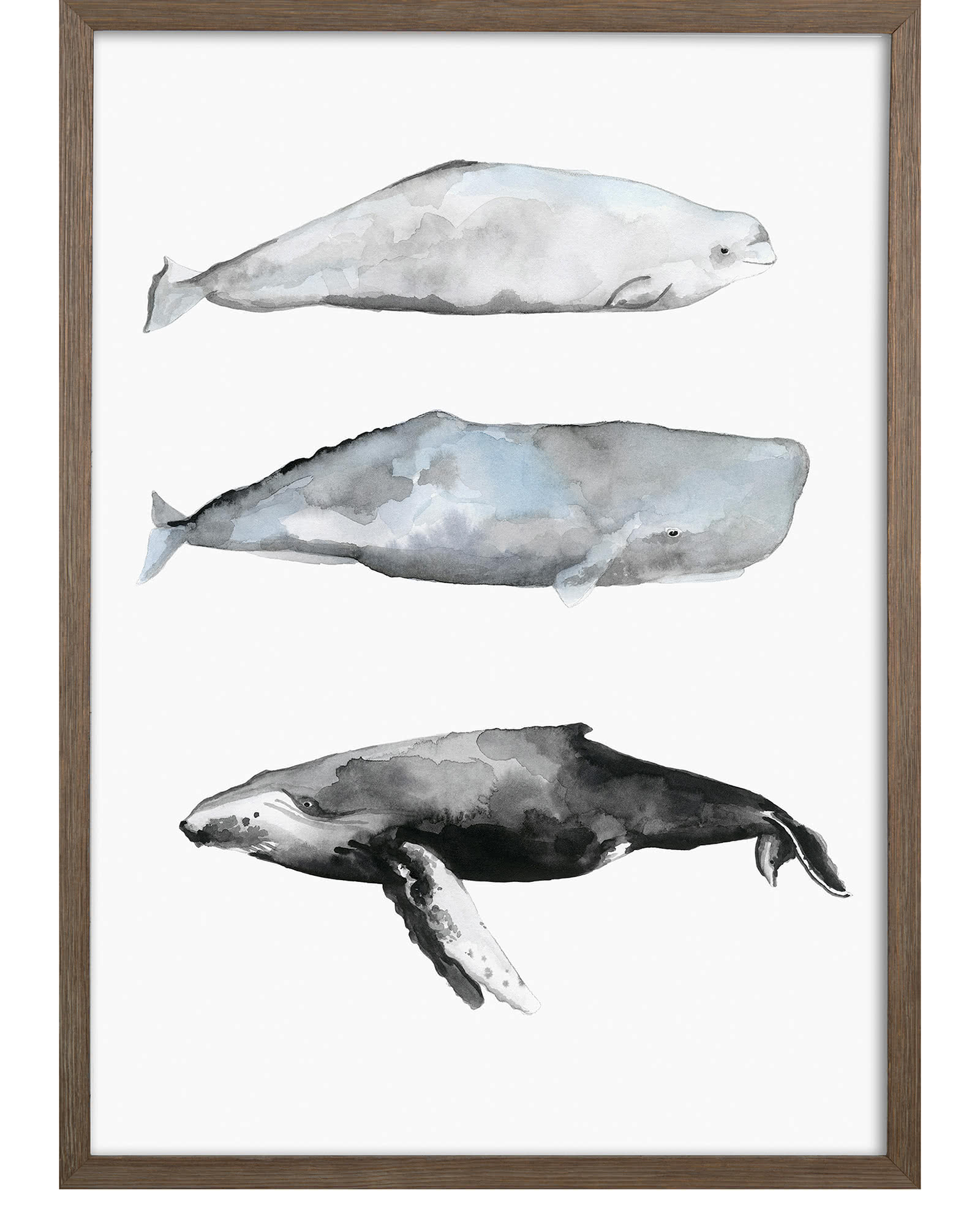"""Whale Grouping1"" by Natasha Marie"