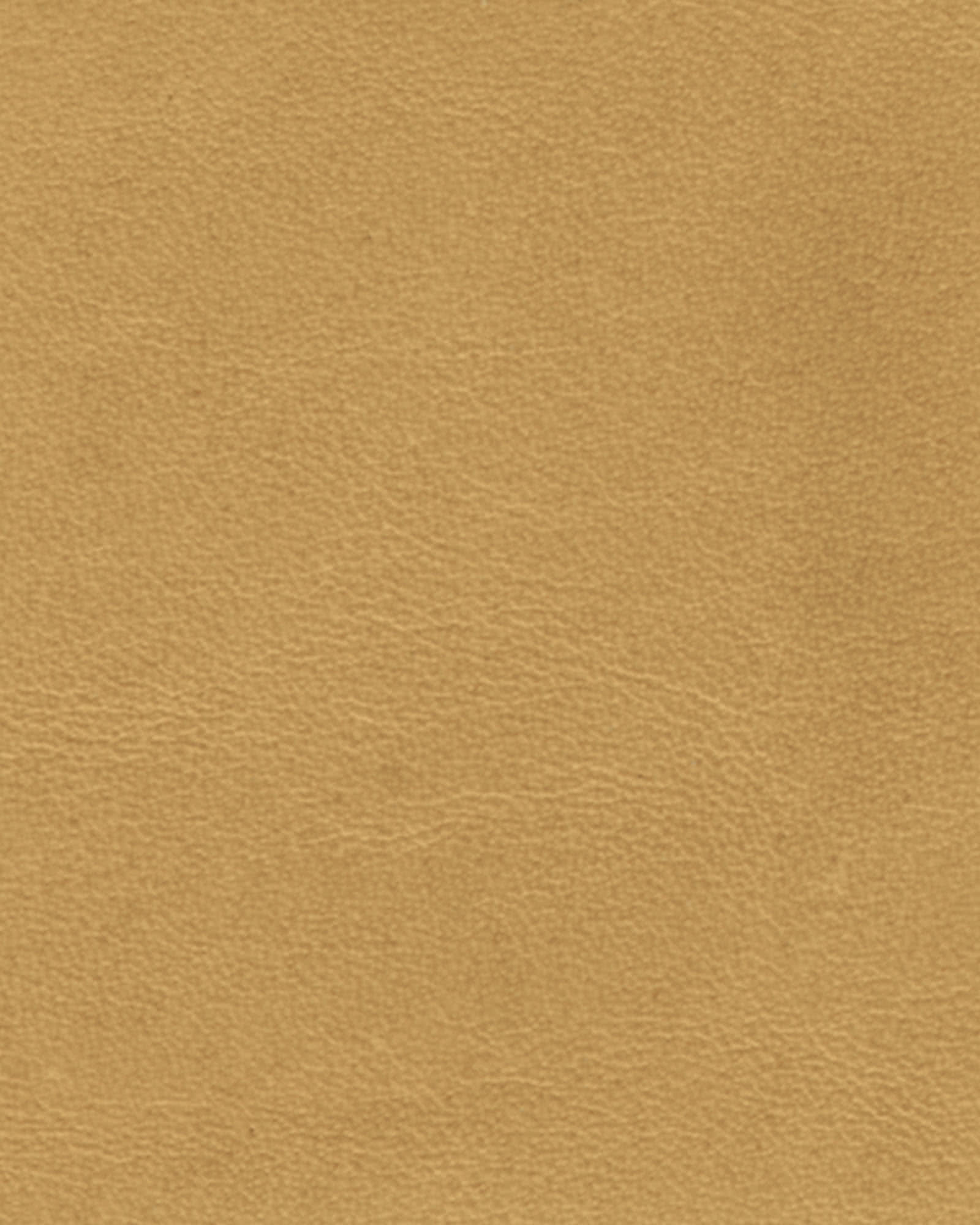 Distressed Leather - Taupe