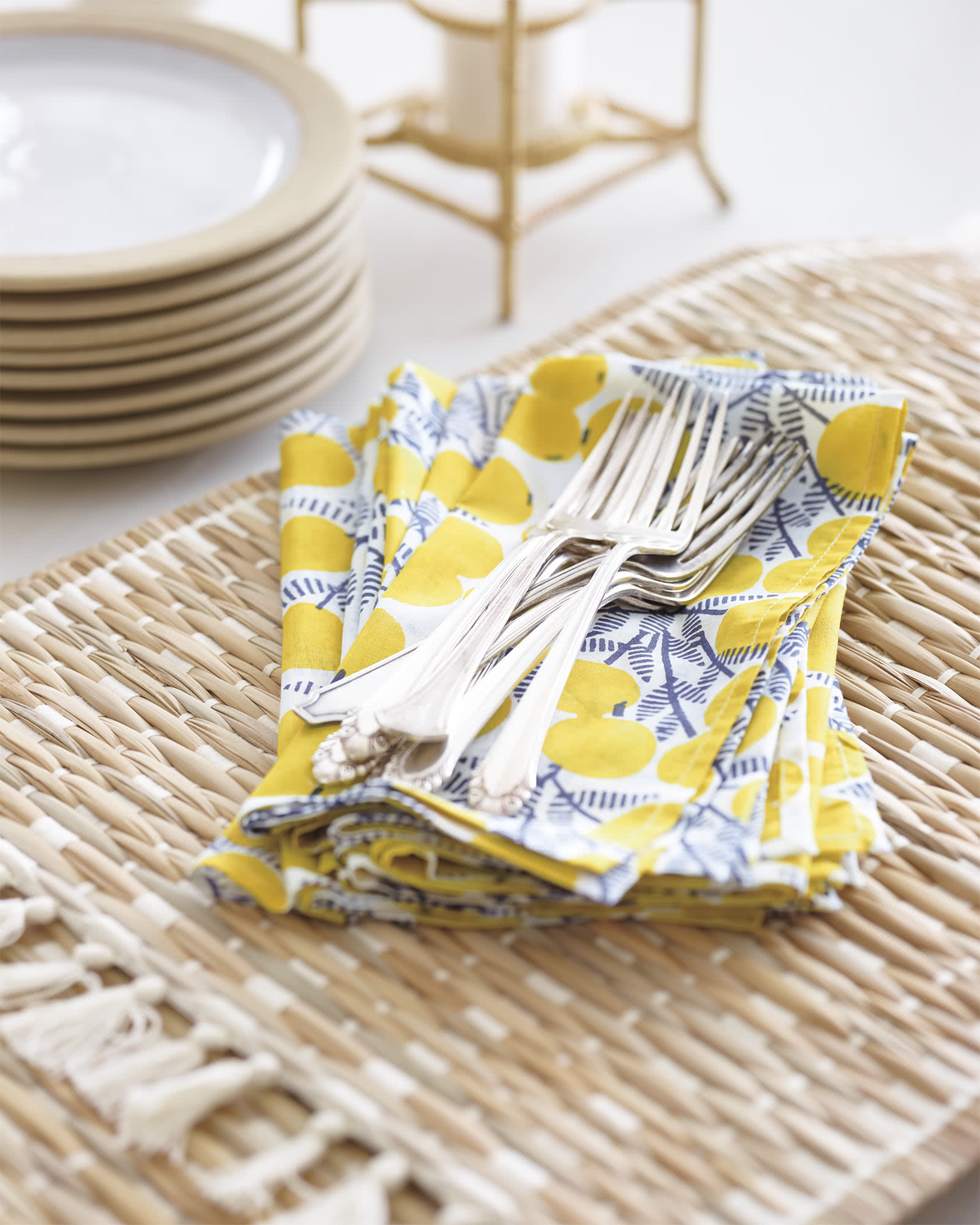 Juniper Napkins (Set of 4)