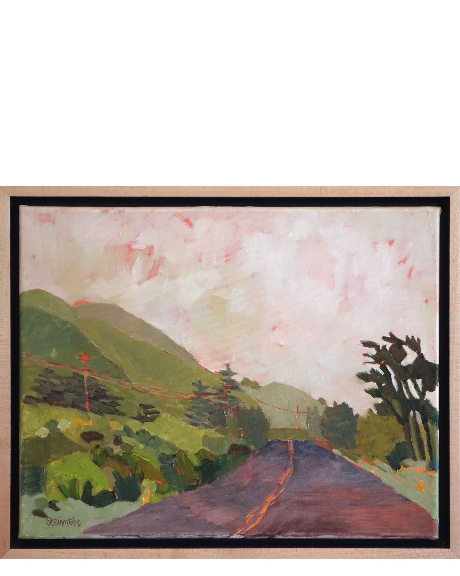 """Highway One Spring Rain"" by Liana Steinmetz"