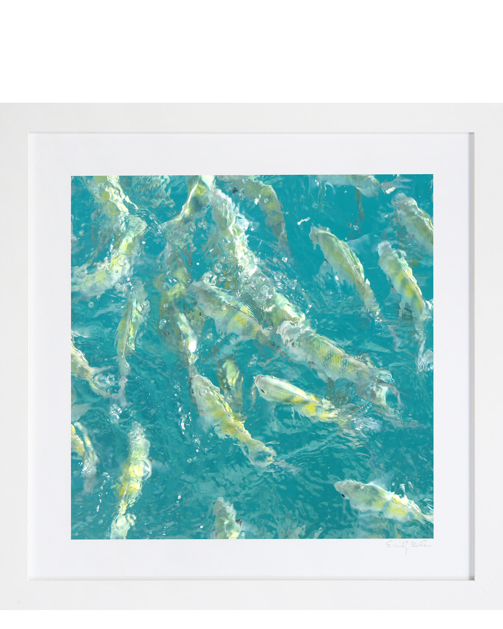 """""""Fish"""" by Emily Baker,"""