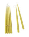 Tapered Candles (Set of 10), Chartreuse