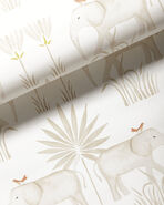 Kalahari Wallpaper,