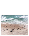 """""""California Day At The Beach"""" by Caroline Pacula,"""