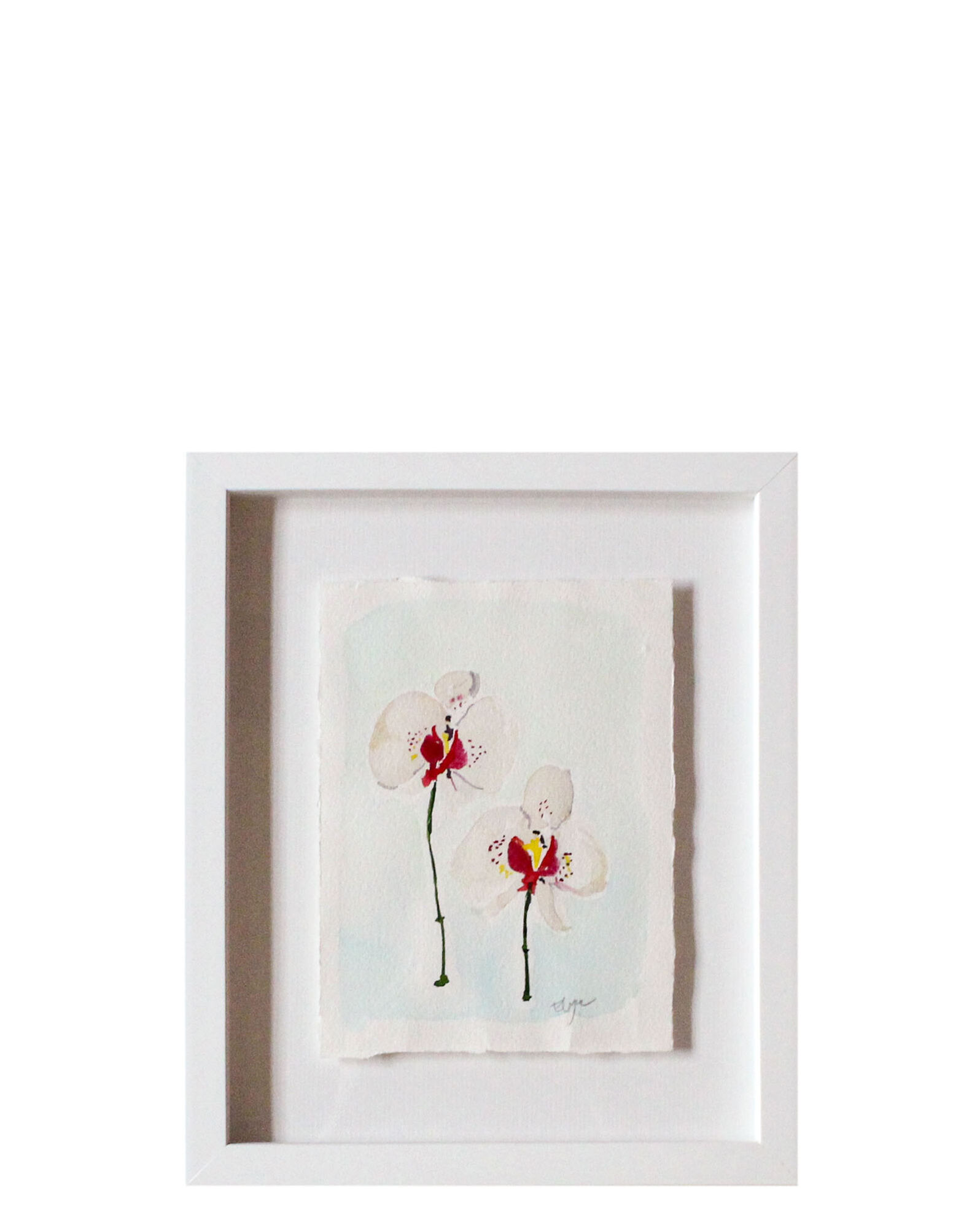 """""""White Orchid Duo"""" by Elayna Johnson,"""