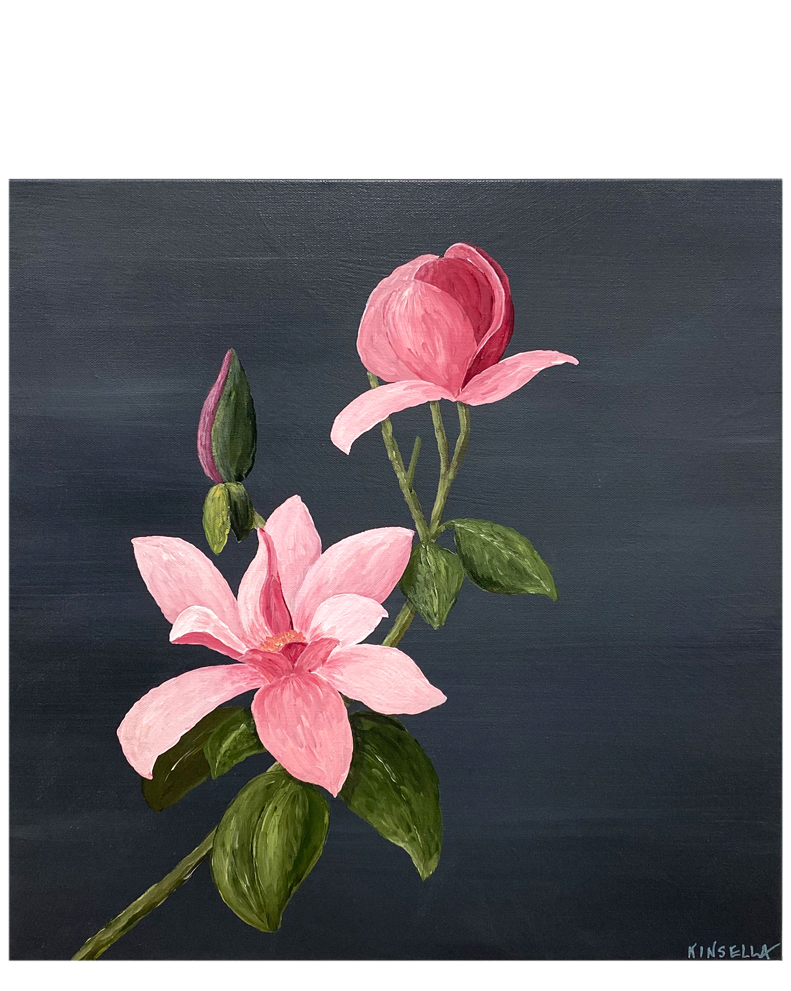 """""""Pretty in Pink"""" by Susan Kinsella,"""
