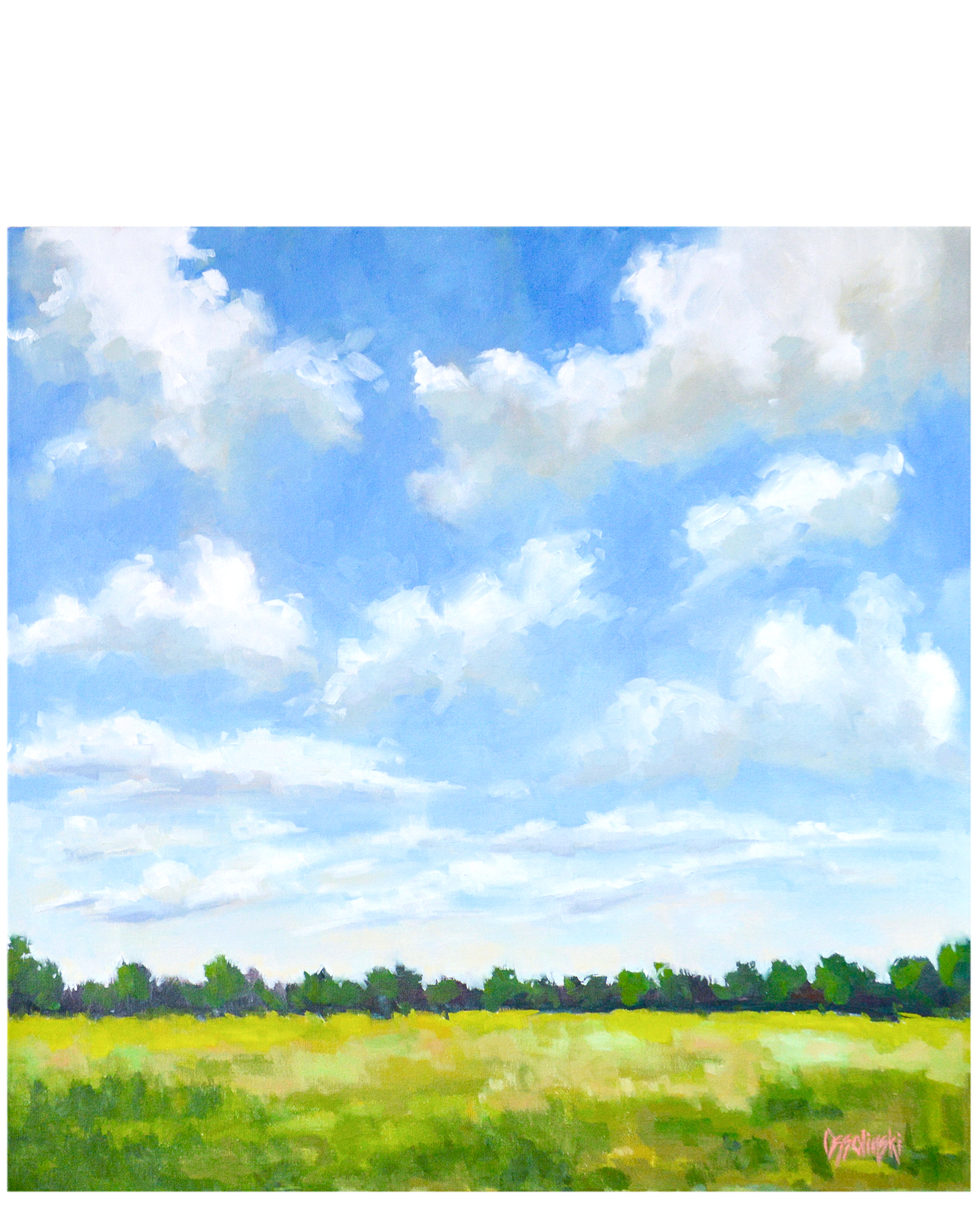 Nothing But Blue Sky by Lauren Ossolinski,