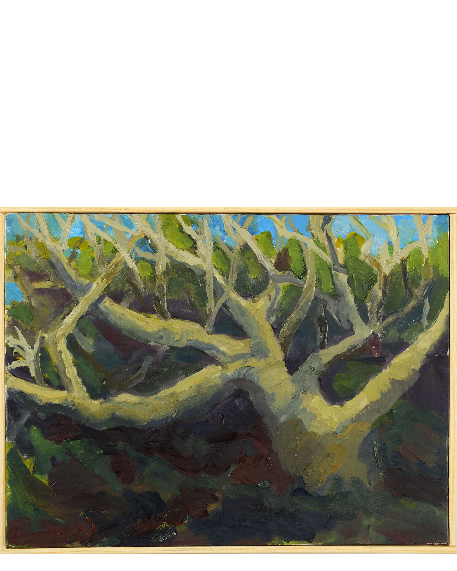 """""""Tree at Coral Cove"""" by Nancy Tart"""