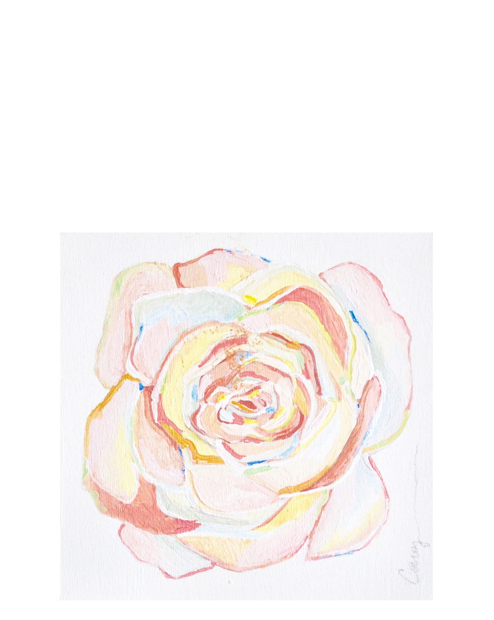"""""""Rose of Many Colors"""" by Carey Haynes,"""