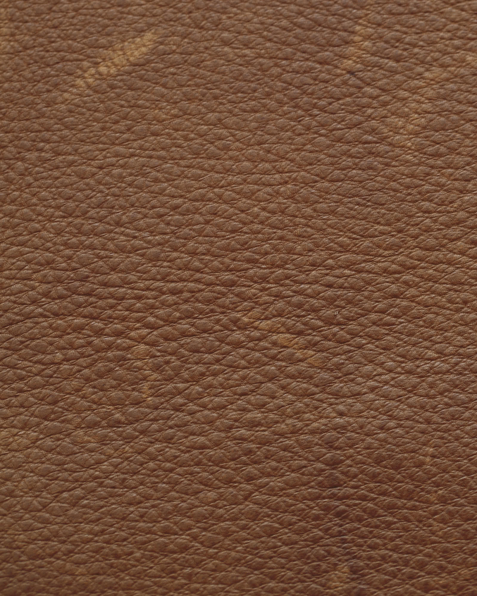 Pebbled Leather - Dark Pine,