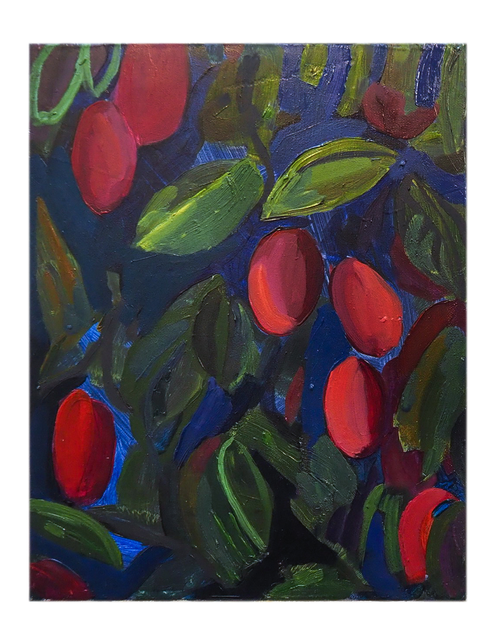 Night Plums by Claire Elliott,