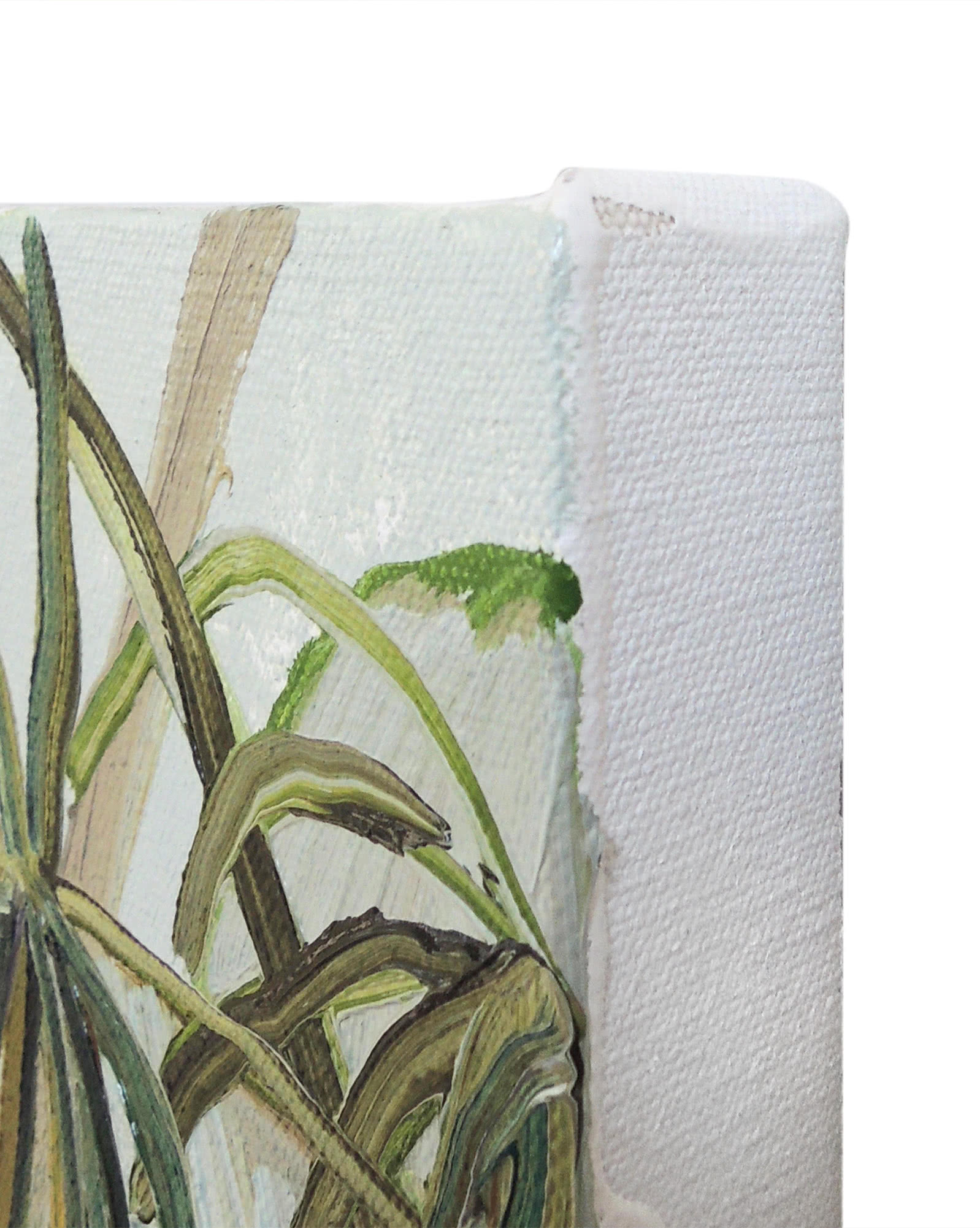 """""""Greenhouse Palms"""" by Claire Elliott,"""