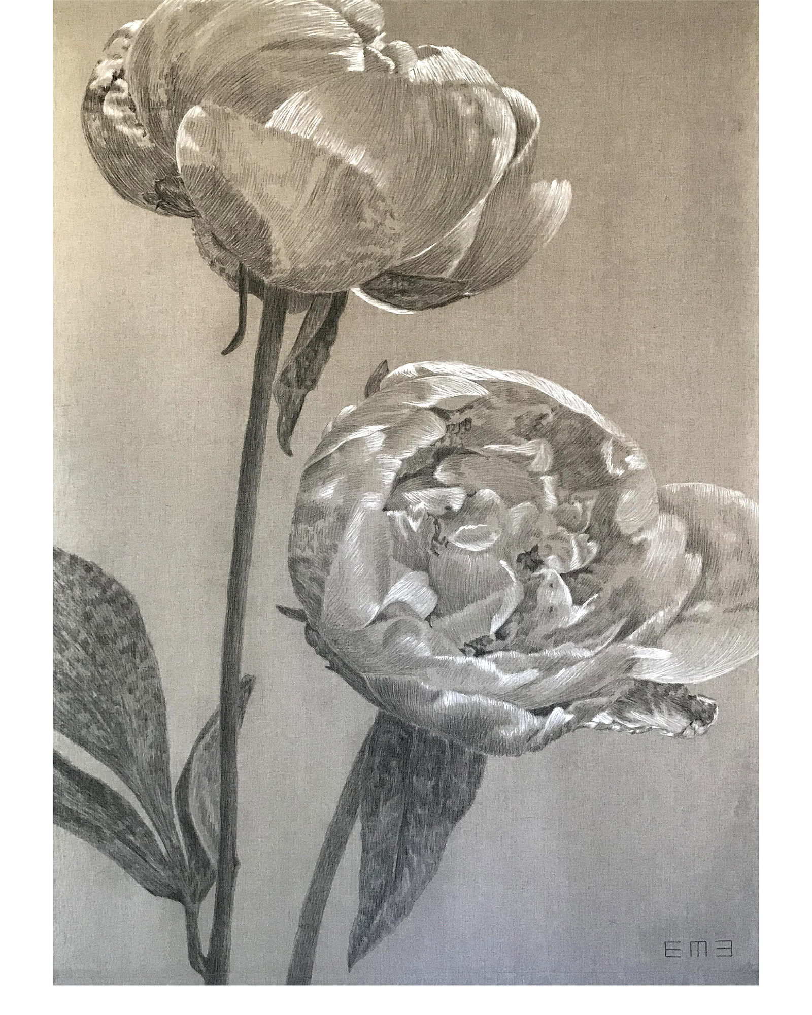 """Double Peony II"" by Emily Morgan Brown"