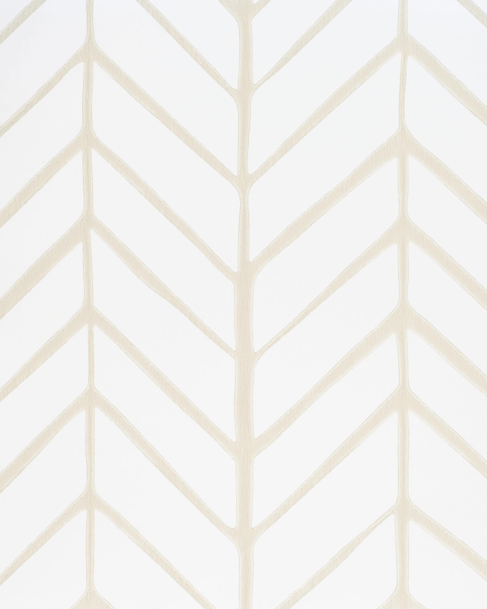 Feather Wallpaper Swatch, Bone