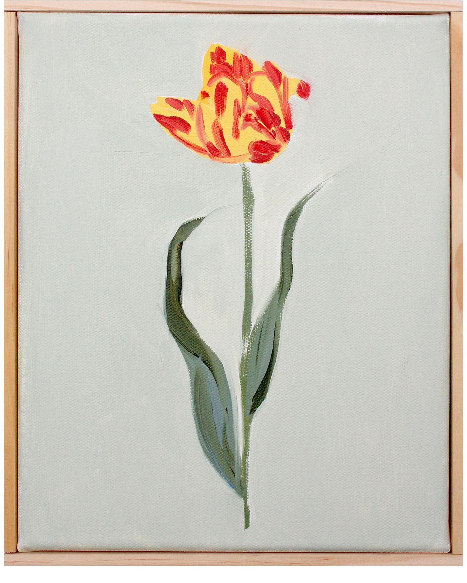 """""""Dutch Tulip Study"""" by Isabel Vexin"""