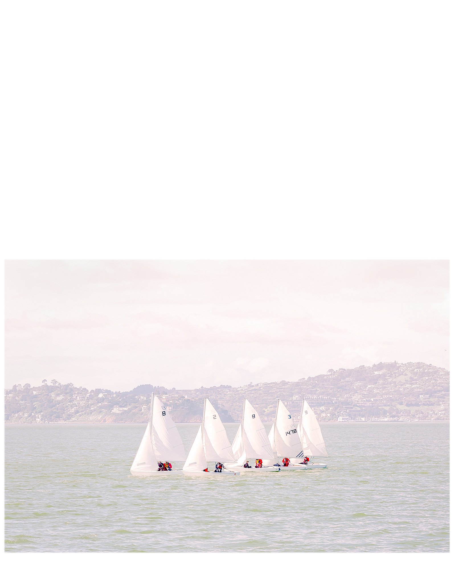 """5 Sails"" by Caroline Pacula,"