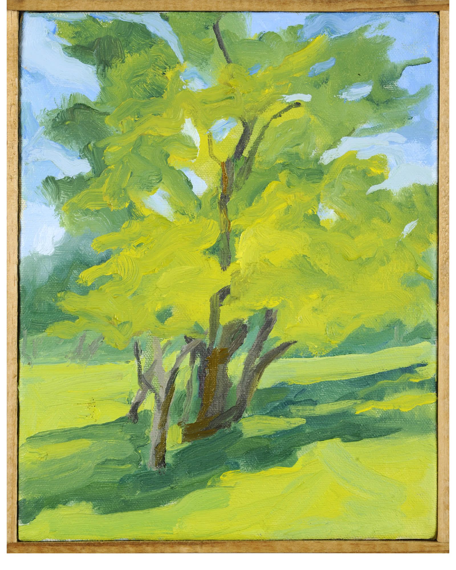 """""""Early Summer, Solebury Township"""" by Nancy Tart"""