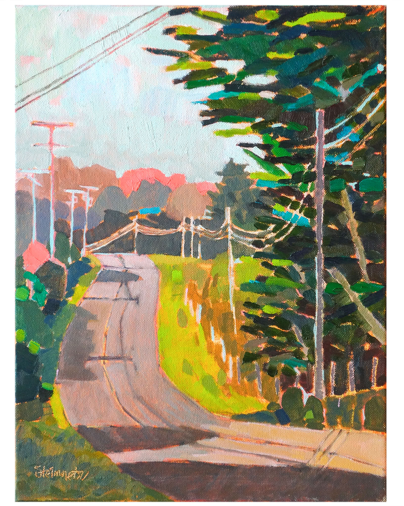 """Up and Down Mendocino"" by Liana Steinmetz,"