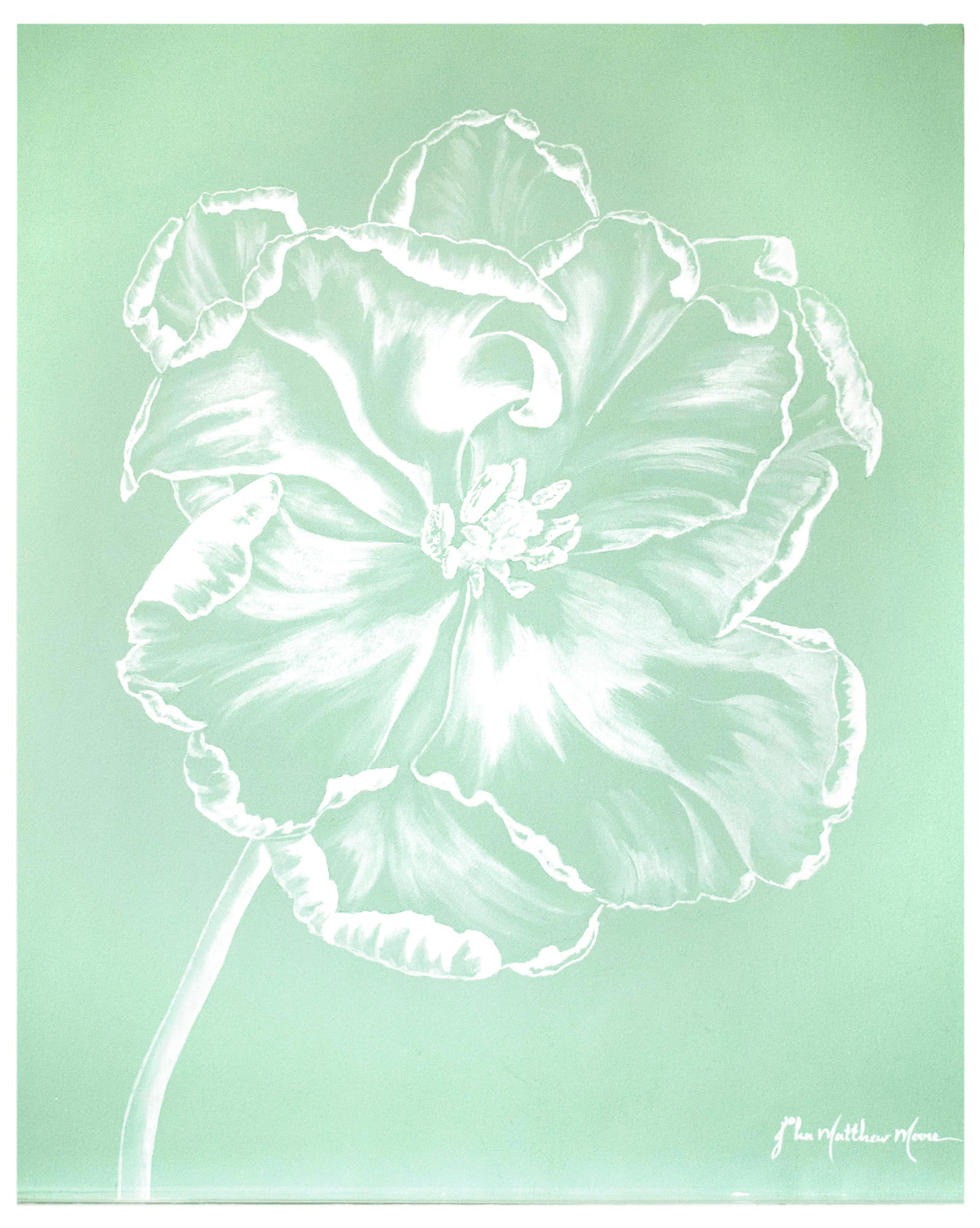 """Ghost Tulip III"" by John Matthew Moore,"