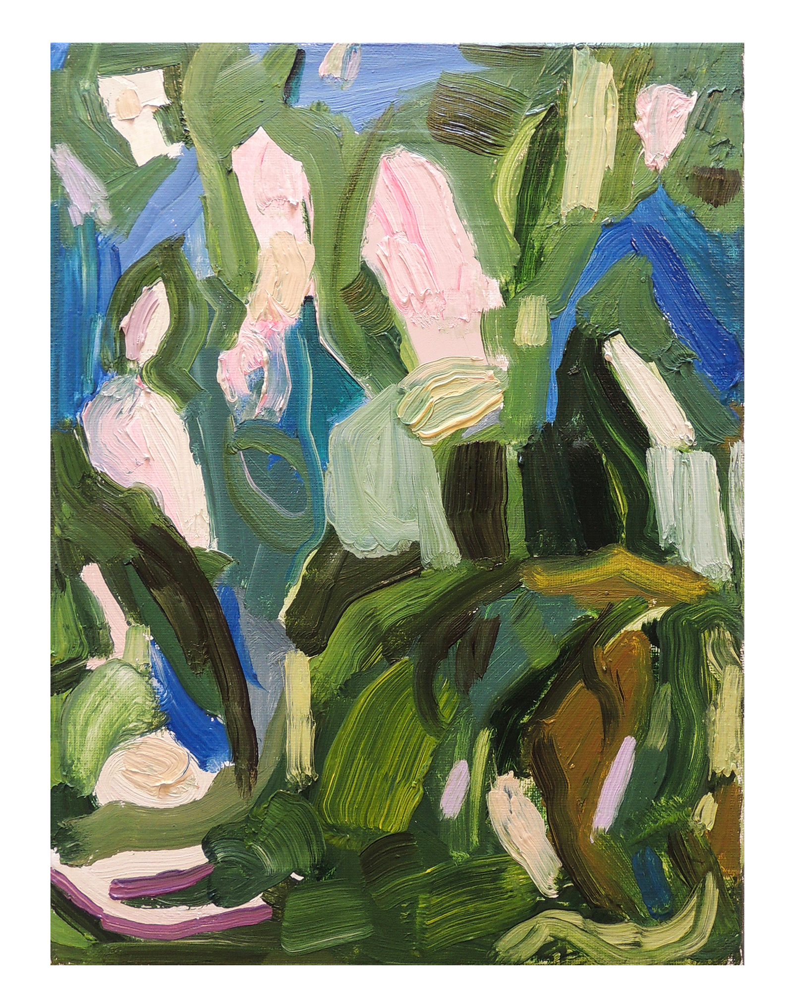 Spring Bloom by Claire Elliott,