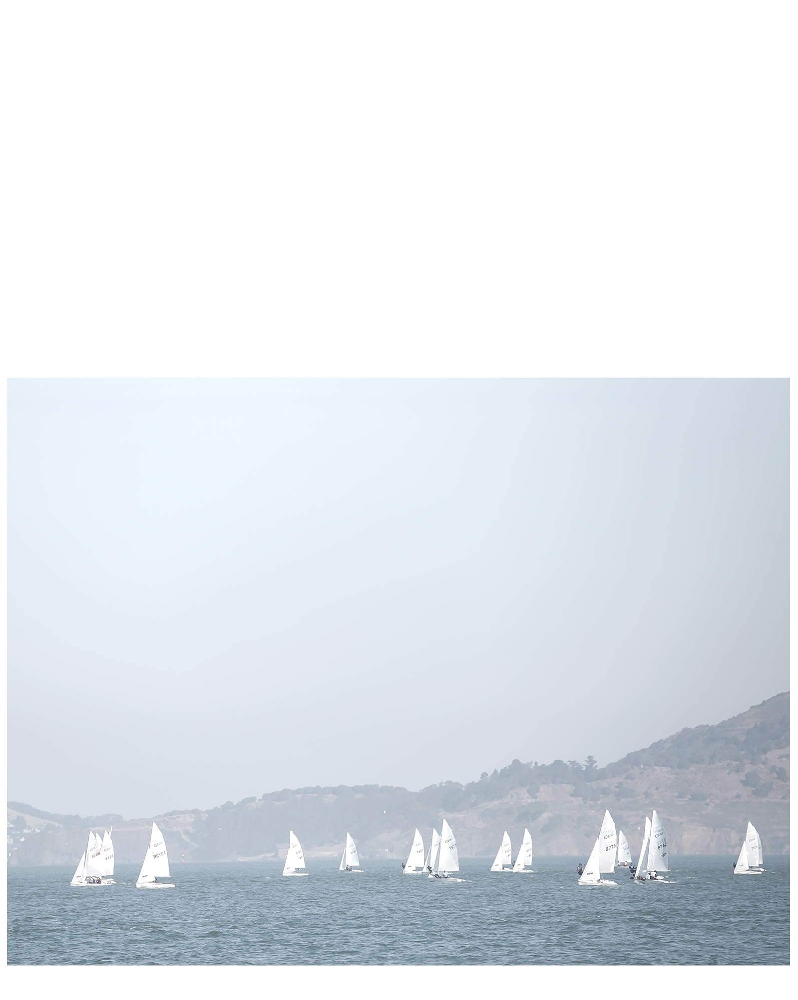 """White Sails"" by Caroline Pacula,"